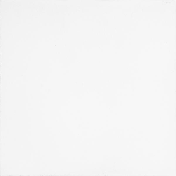 White Field Tile